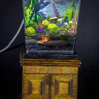 Dollhouse Miniature Reptile Terrarium Frogs and Fish Tank Aquarium with Electric Mini Plug In Lighted Hood Hand Made OOAK NO STAND