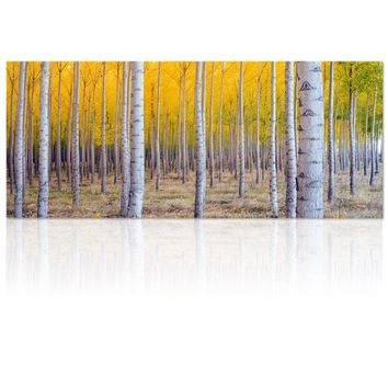 Large Size Autumn Forest Canvas Wall Art Prints Tree Forest Painting Printed on Canvas,Framed And Stretched