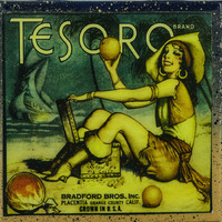Tesoro Brand - Vintage Citrus Crate Label - Handmade Recycled Tile Coaster