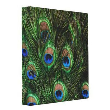 Peacock Feather 3 Ring Binders from Zazzle.com