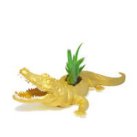 Up-cycled Large Gold Alligator Planter