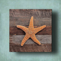 Sugar Starfish on Driftwood Panel