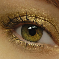Yellow Gold Eyeshadow - ASPEN GOLD Shimmer Eye Shadow - Fall Collection - Large 10 gram Jar