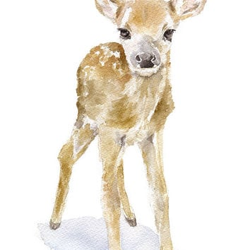 Deer Fawn 2 Watercolor