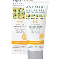 All in One Beauty Balm Sheer Tint with SPF 30 | Andalou Naturals