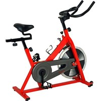Sunny Health and Fitness Indoor Cycling Bike - Walmart.com