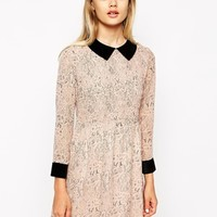 Little White Lies Smock Dress In Lace Print With Contrast Collar