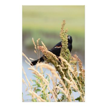Red Winged Blackbird Photo Stationery