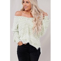 It's All In The Details POL Sweater (Desert Sage Multi)