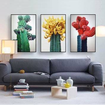 Flowering Desert Cactus Plants Wall Art on Canvas