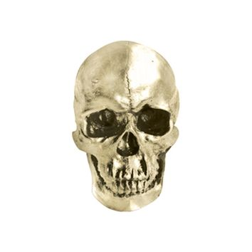 The Darwin | Faux Human Skull | Gold Resin
