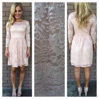 Pink Shimmer Lace Long Sleeve Dress