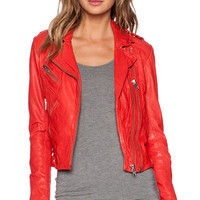 DOMA Fitted Moto Jacket in Red