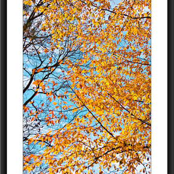 Fall Foliage Leaves Photo, Nature Photograph, Yellow Leaves, Orange Leaves, Rustic, Fall, Autumn, Fine Art Photo, Wall Decor, Home Decor