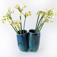 Pottery Flowers Vase / Blue Vessels / Twin Vase