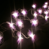 Purple Colour Set Hanging Nylon stringlights for party and home decoration indoor and outdoor (20 Flowers/pack)