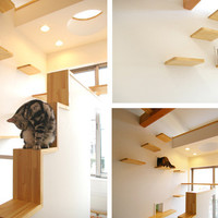 Another Amazing Cat-friendly House Design from Japan|moderncat :: cat products, cat toys, cat furniture, and more…all with modern style