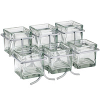 14W x 9D x 7H Iron 6 Glass Jar Display Silver