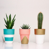 Tall Hand Painted Terracotta Pots - Succulent, Cactus, Cacti, Planter, Pot, Plants, Paint, Handmade, Made to Order, Custom