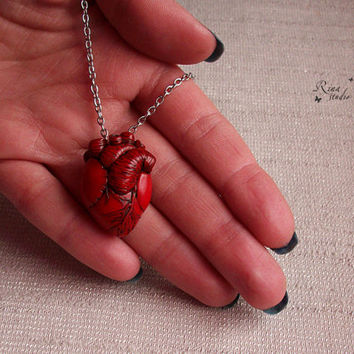 Best Anatomical Human Heart Products On Wanelo