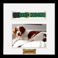 """Pet Memorial Shadow Box with Collar and Custom Engraved Name Plate - Plaque (10.25"""" x 10.25"""")"""