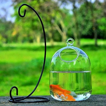Hydroponic Wall Hanging Bubble Aquarium Fish Glass DIY Pot Vase Plant Decor HU