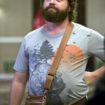 Zack Galifianakis Poster the hangover 24x36
