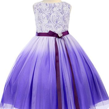 (Sale) Girls Size 3T 4T Purple Ombré Tulle Dress with Rosette Bodice