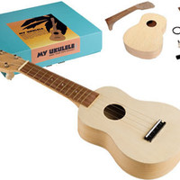 MY UKULELE KIT