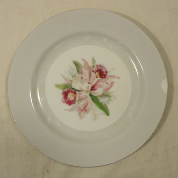 Noritake 5049 Vintage Salad Plate 7 1/2in China Gold Rim Chipped -- Used