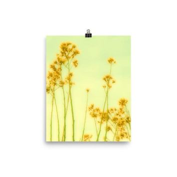 Abstract Yellow Flowers Matte Poster