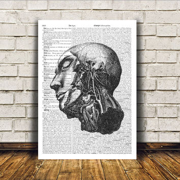 Medical print Gothic decor Head anatomy poster Macabre art RTA273
