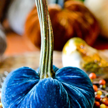 1 Medium Ocean Blue Silk Velvet Pumpkin, Fall Decor, Table Centerpiece, Homemade Rustic Decoration