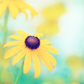 """Flower Photography - yellow turquoise teal colorful mint blue green nature floral spring wall print - 20x24, 24x30 Photograph, """"Cheerful"""""""