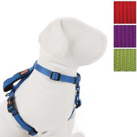 KONG® Harness with Traffic Loop for Dogs - Summer PETssentials - Dog - PetSmart