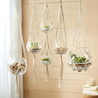 ASSORTED PLANT HANGERS/CANDLEHOLDERS