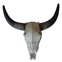 Threshold™ Steer Head Skull - Large : Target
