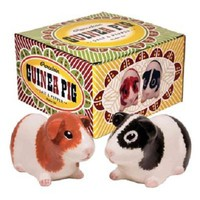 Guinea Pig Salt & Pepper Shaker Set - PRE-ORDER, SHIPS in FEBRUARY