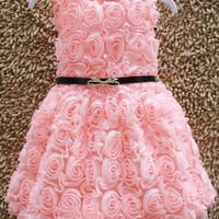 Girl Rose Party Dress 3T