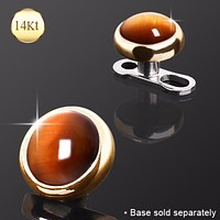 14Kt Yellow Gold Round Dermal Top with Tiger Eye Stone