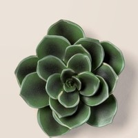 Large Succulent Wall Decor