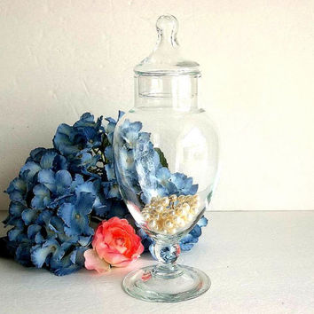 Vintage Apothecary Jar with lid clear glass footed pedestal apothecary jar candy vase stemmed apothecary Cottage Shabby