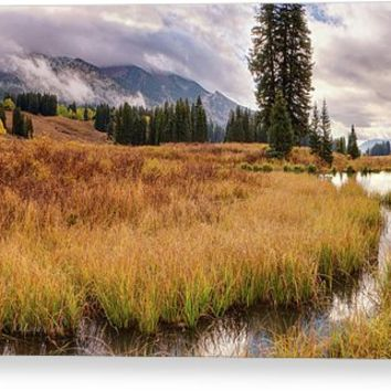 Colorado Fall Colors 3 Acrylic Print