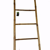 Bamboo Ladder, 72H""