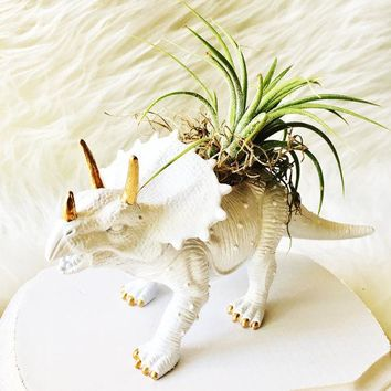 White Triceratops Gold Accents Dinosaur Planter + Air Plant | Upcycled Planter | Home Decor Office Planter | Dorm Decor Gift |Desk Accessory
