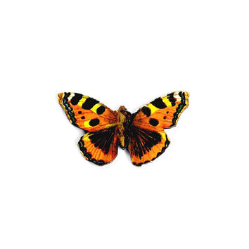 Wood Butterfly Brooch - Butterfly Jewelry, Butterfly Pin, Wood Brooch, Animal Pin, Insect Pin, Tortoiseshell Butterfly, Insect Jewelry