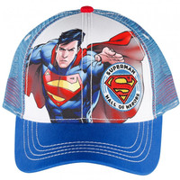 Superman Character Hall Of Heroes Cap